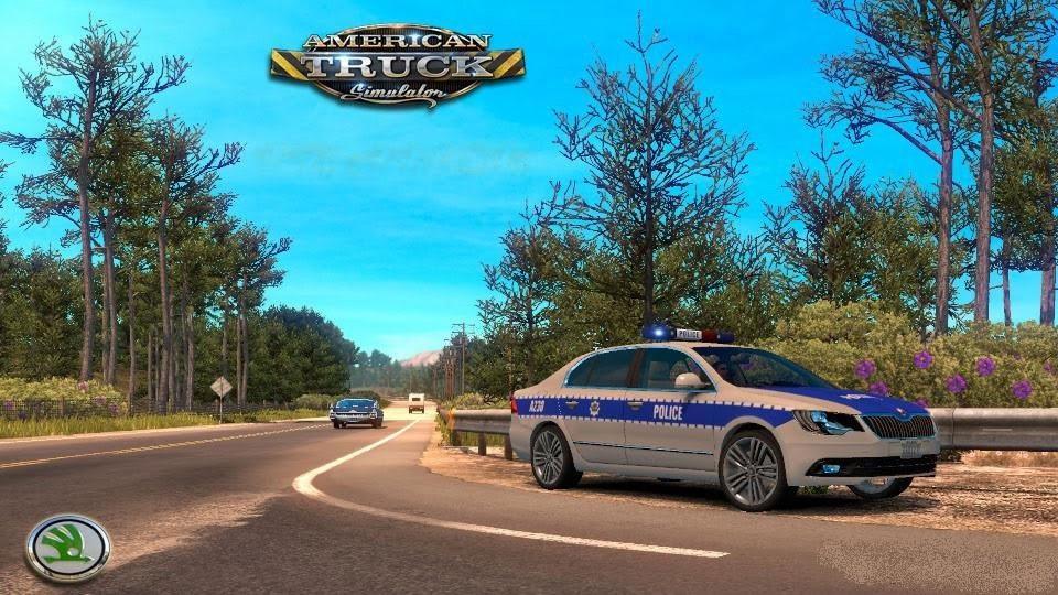 sh-skoda-car-police-1-2_1