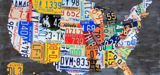 More-License-Plates-601×401